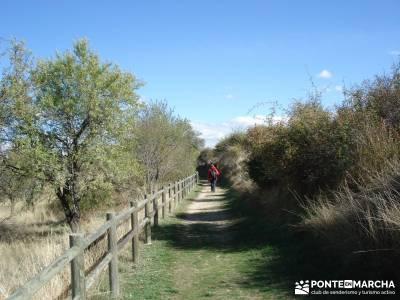 Hoces del Río Duratón - Sepúlveda;que es senderismo los senderos que ver en madrid